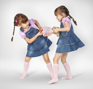 11-bigstock-Little-Twin-Girls-Fighting-26448137